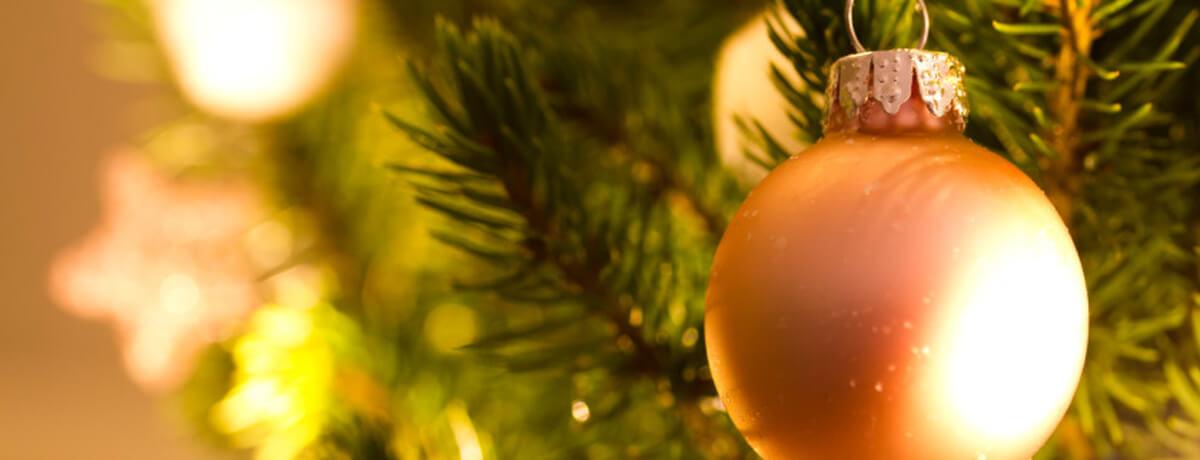 Collecte de sapins de Noël, Ville de Magog