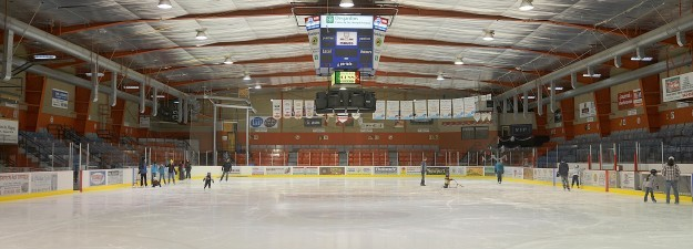 section-arena