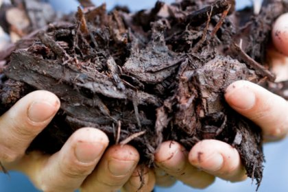 Distribution de compost à l'écocentre, samedis, Ville de Magog