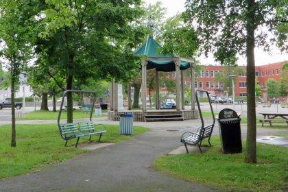 Parc-des-Braves_arbre_abattage