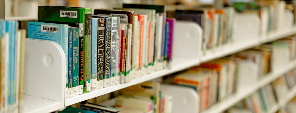Livre Mystere A La Bibliotheque Memphremagog Ville De Magog