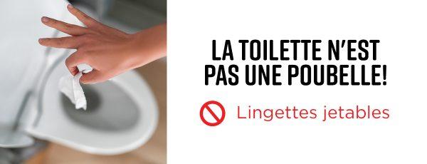 Ville de Magog | La toilette n'est pas une poubelle!